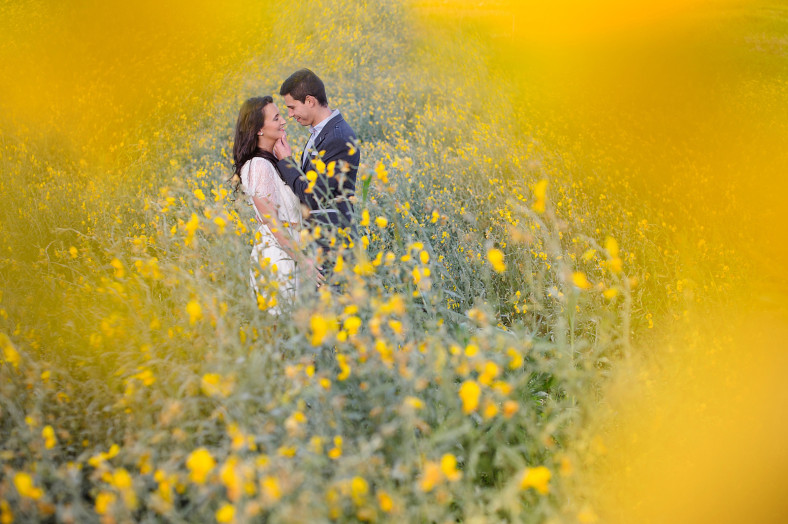 engagement shoot in field of yellow flowers