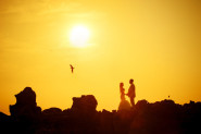 Bride and groom at sunrise with seagull flying past