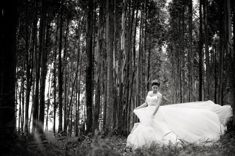 swan dress in woods