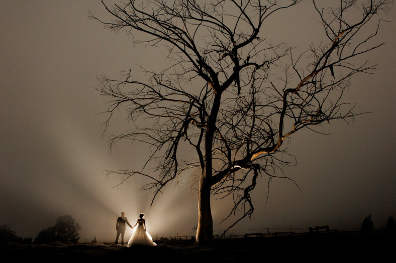 bride and groom with dead tree