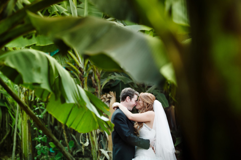Bride and Groom in Banana trees