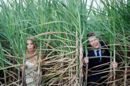 Fun wedding pic of couple in the sugar cane