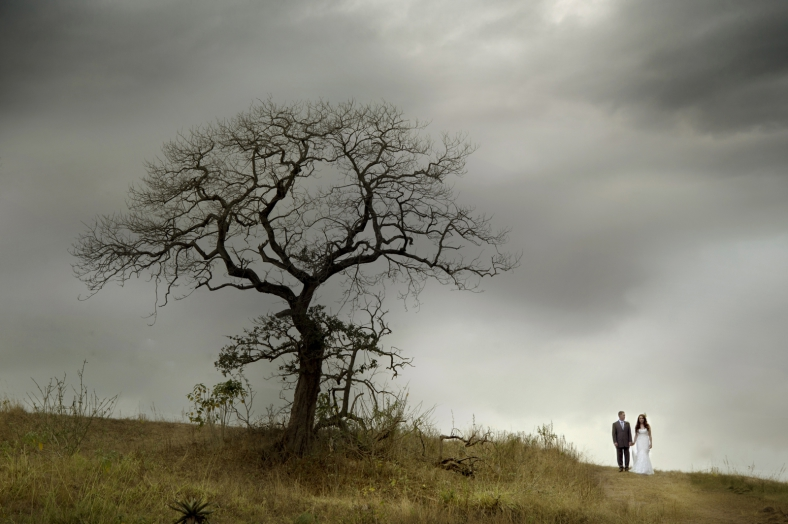 African Tree Bride and Groom