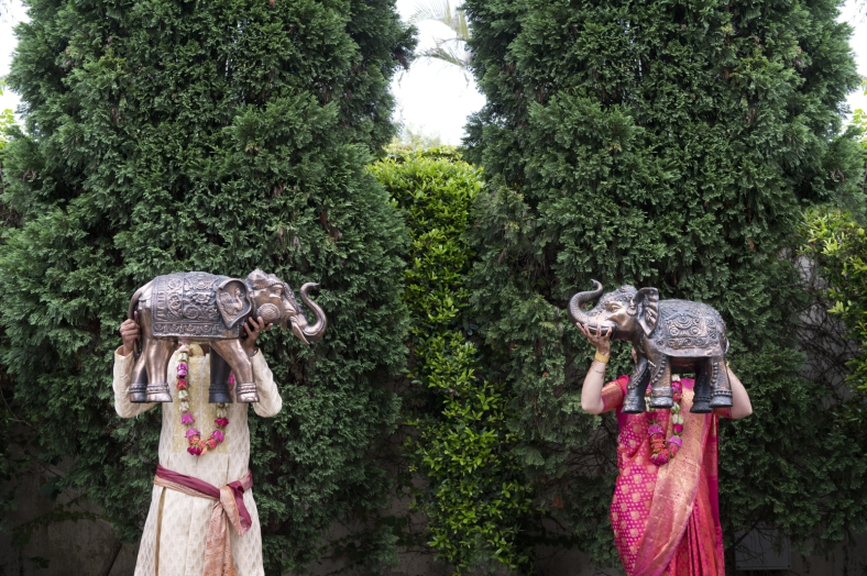 Hindu Bride and Groom with Elephants