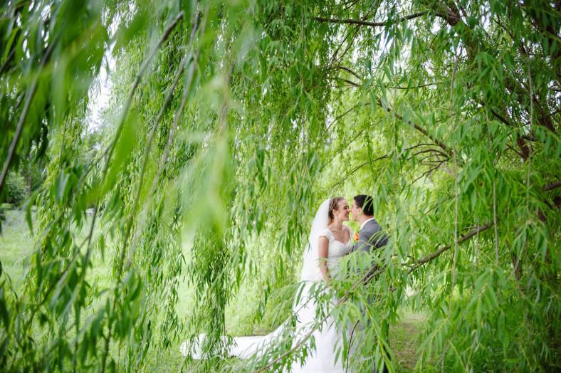 Bride and Groom in a willow tree