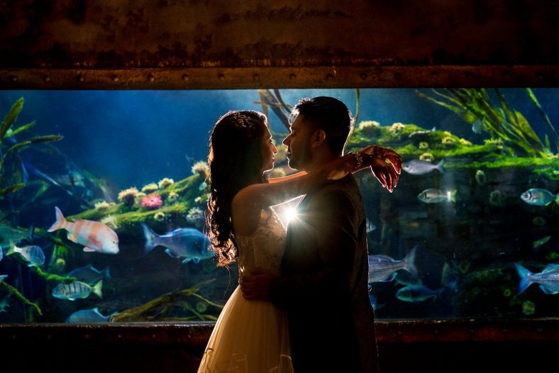 Creative portrait of Hindu couple in Durban aquarium.