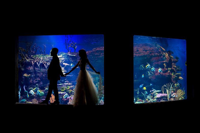 Creative wedding portrait of couple in aquarium.
