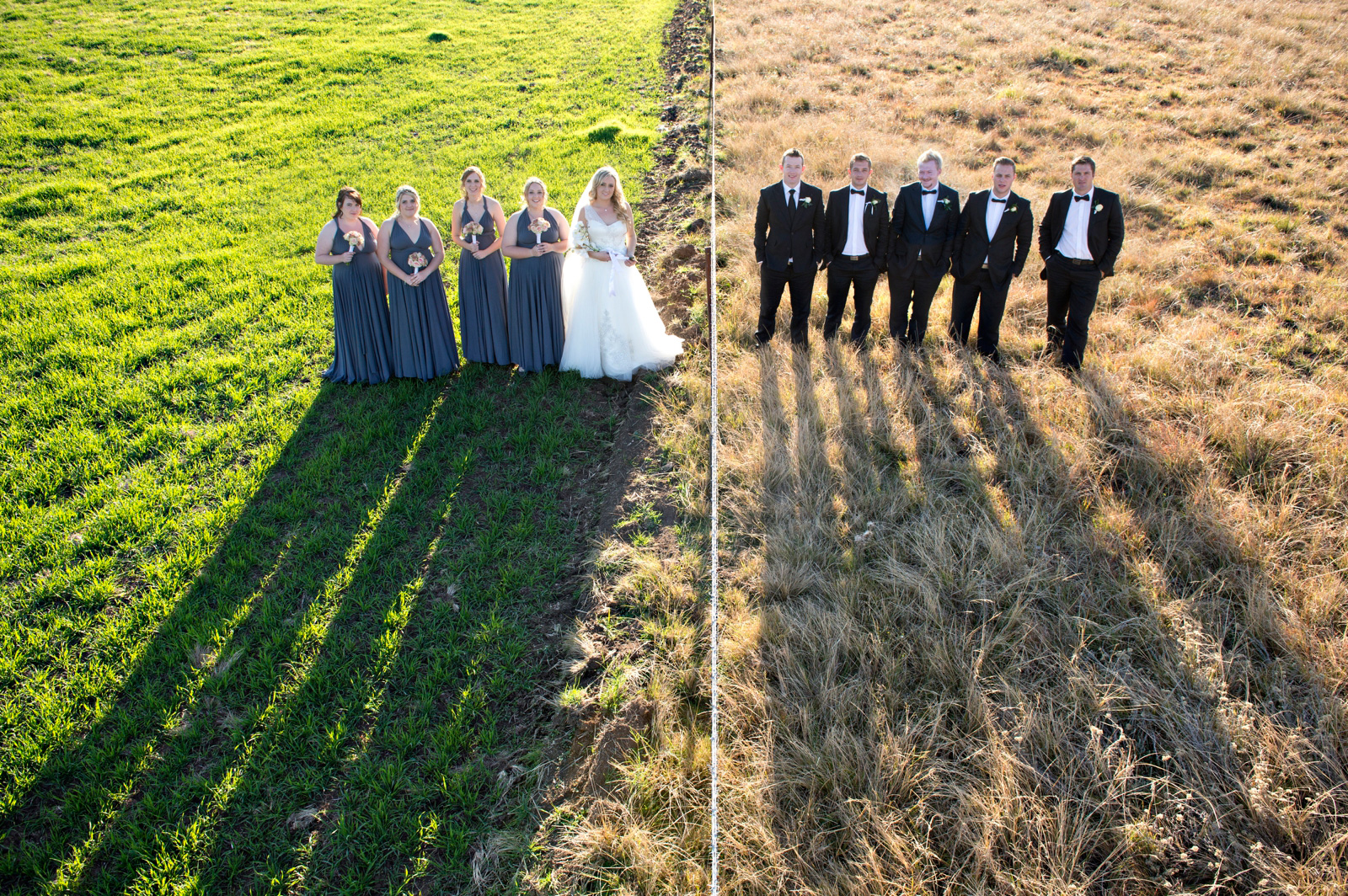 Bridal party in 2 different fields