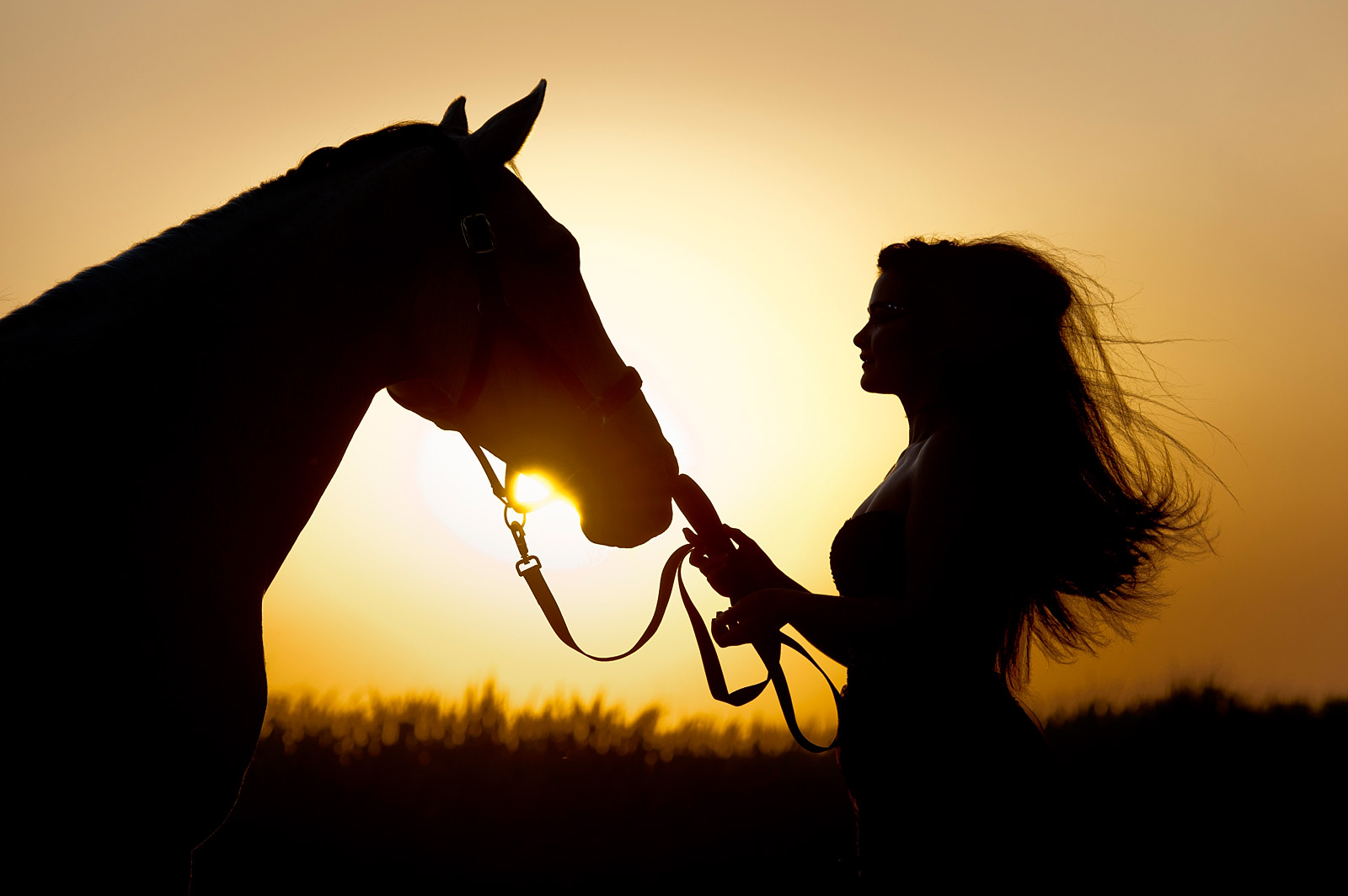 Sunset shot of girl and horse