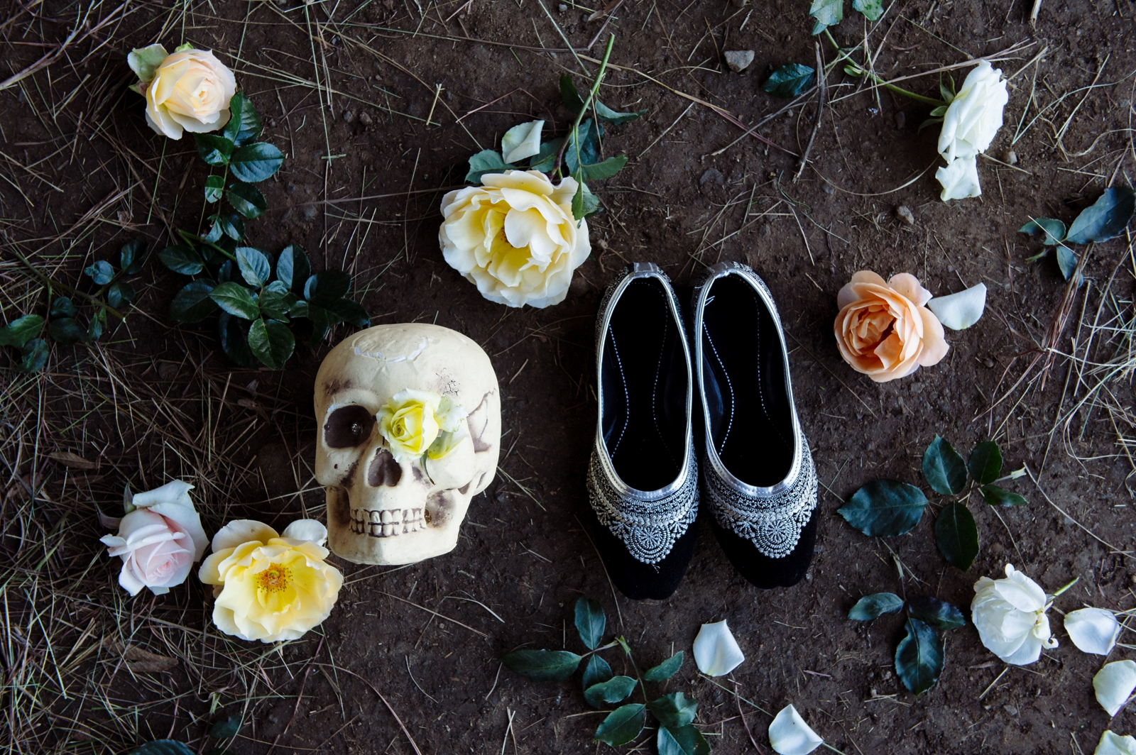Skull and shoes