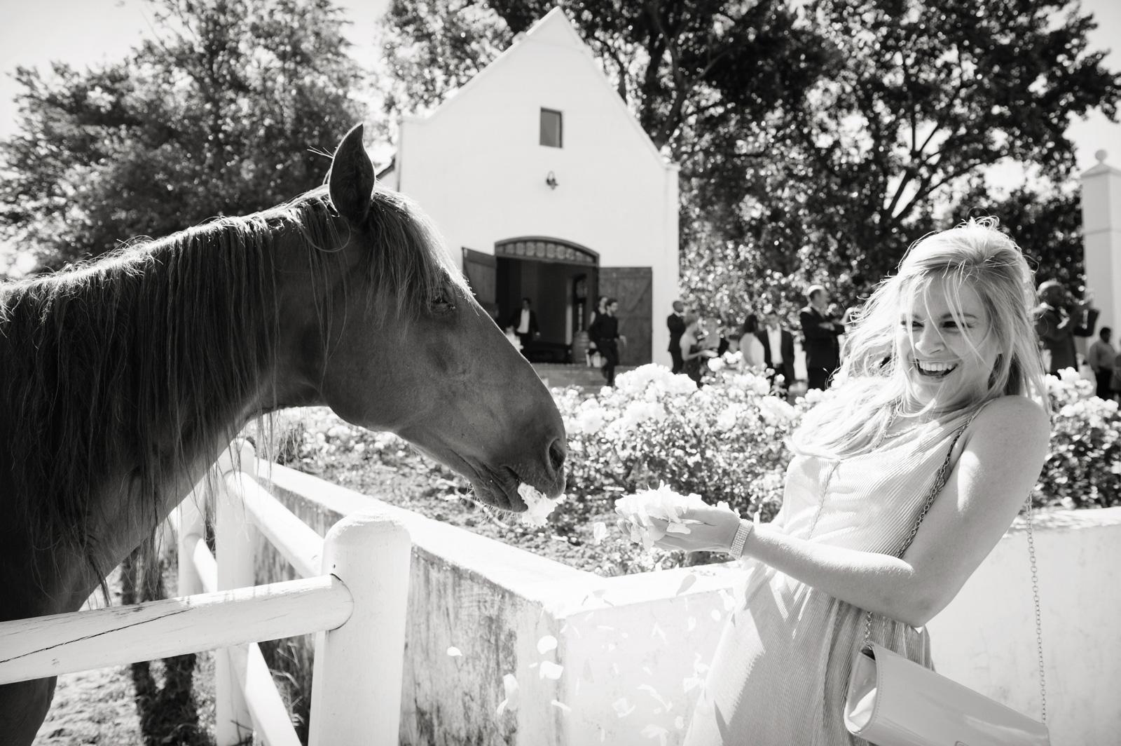 Horse attacks woman