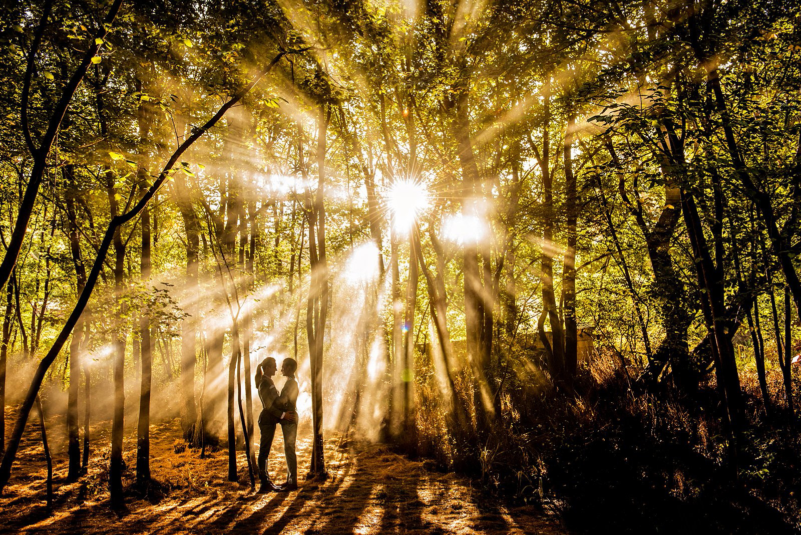 Gay wedding in a forrest with sunbeams