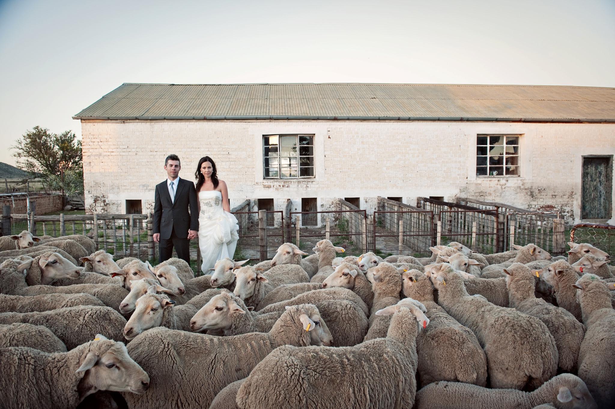 Testimonials-Top-South-African-Wedding-Photographer-Jacki-Bruniquel-020-001